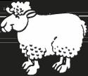 Schaf Echtlammfell